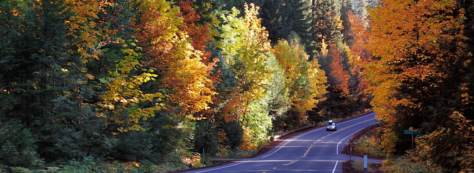 Car driving along Oregon Route 126 with fall foliage as back drop