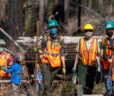 Volunteers plant trees in the Terwilliger burn area as part of the McKenzie Regenerative Travel project