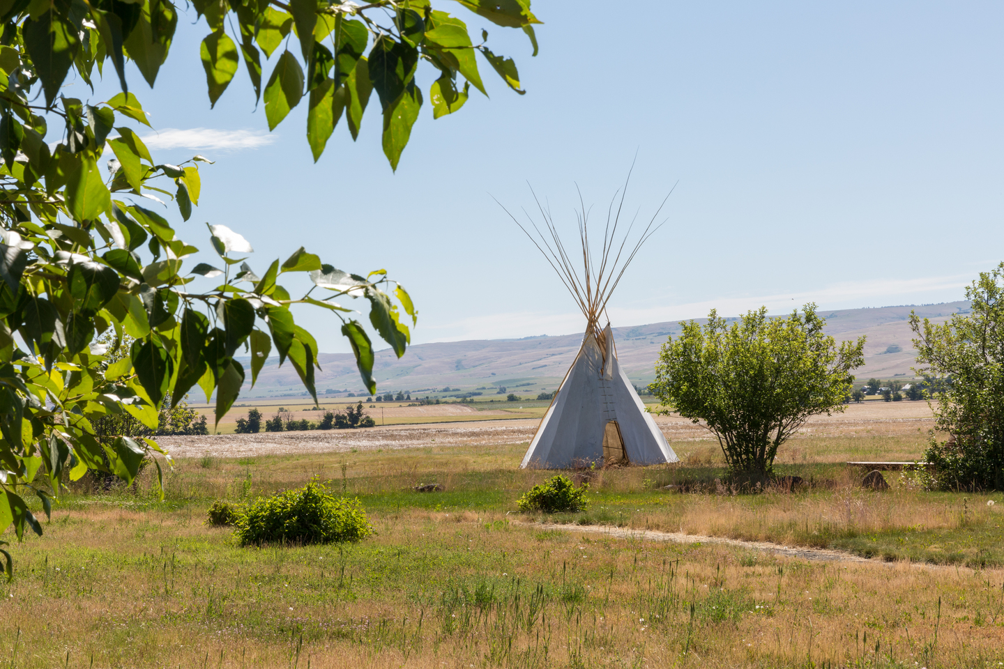 Teepee in grassy field at The Tamástslikt Cultural Institute is a museum and research institute located on the Umatilla Indian Reservation near Pendleton in eastern Oregon.